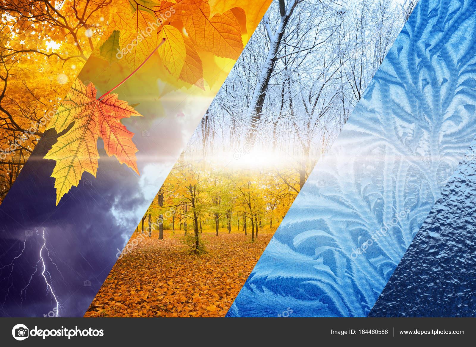 depositphotos 164460586 stock photo fall turns to winter weather